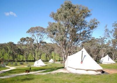 Cosy Tents Campsite
